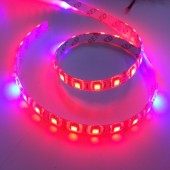 Plant Growing 5050 LED Strip Red Blue 8:1 Light Hydroponic 12V 5M