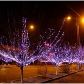 50M 250LEDs String 8 Modes Garland Fairy Light Garden Party