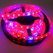 16.4ft 12V Plant Growth Light 5050 Flexible Led Strips Red Blue 5M