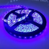 12V 5M 300 LEDs Blue 5050 IP65 Waterproof Flexible LED Strip Light