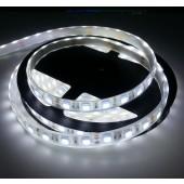 12V IP68 Waterproof 5M 300 LEDs SMD 5050 White LED Strip Light