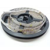 16.4Ft 12V 5050 Single Color Horse Race Flexible LED Strip 30Leds/M