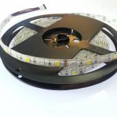 Flexible 16.4 Ft 12V IP65/IP67 Waterproof 5050 RGBW LED Strip Light