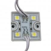 20pcs DC12V 5050 4 LED Modules IP65 Waterproof LED Modules
